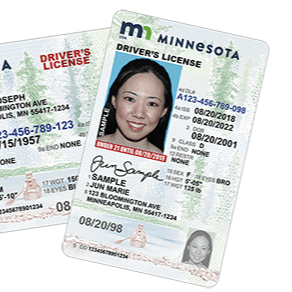 Minnesota Driver Licenses