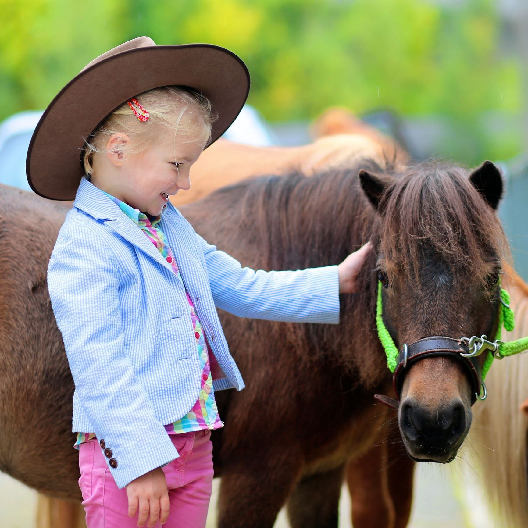 Little girl petting pony.